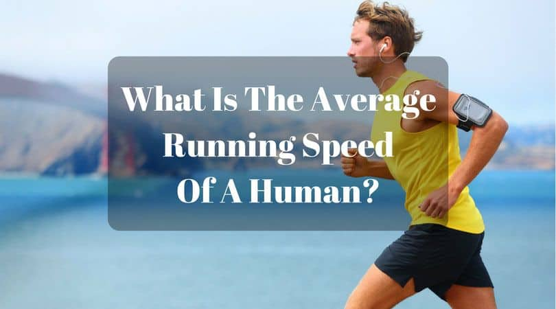 average running speed of a human